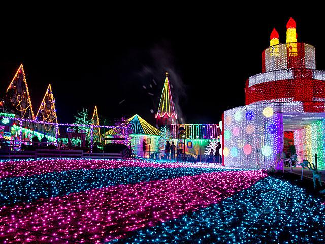東京ドイツ村